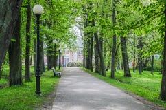 Malerischer Kadriorg-Park Zeit der Gasse im Frühjahr, Tallinn, Estland Stockfotos