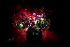 Malerischer purpurroter Frühling blüht im Glasvase, der in Folge auf einem dunklen Hintergrund mit Sternen mit Licht und Nebel st stockfotografie