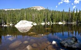 Malerischer See und Wald Stockbilder