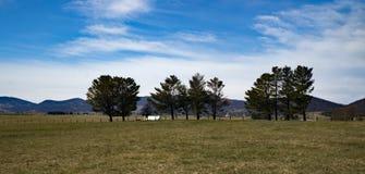 """Malerisches Bauernhof †""""unterdrückt Garten, Virginia, USA Stockfotos"""