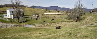 """Malerisches Bauernhof †""""unterdrückt Garten, Virginia, USA Lizenzfreie Stockfotos"""