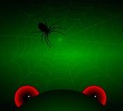 Males de ojo y una araña en el web Fotografía de archivo