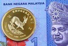 Malese blu una fattura di ringgit con una moneta di rand dell'oro fotografia stock libera da diritti