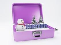 Maleta del viaje concepto de las vacaciones del invierno Foto de archivo