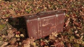 Maleta vieja con el bastón en las hojas de otoño almacen de metraje de vídeo