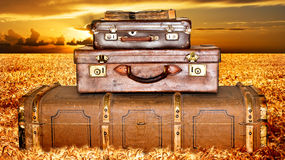 Maletas que viajan en un campo de trigo en la puesta del sol Imagen de archivo