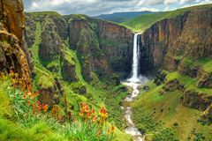 Maletsunyane Falls in Lesotho Africa. Most beautiful waterfall in the world. Green scenic landscape of amazing water fall dropping into a river inside canyons stock photos