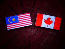 Malezyjczyk flaga z kanadyjczyk flaga na drzewnym fiszorku odizolowywającym zdjęcia stock