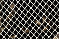Malha plástica branca em Diamond Grid Pattern fotos de stock