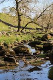 Malham Beck, crique de Malham, Yorkshire images stock