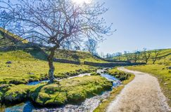 Malham Beck with footpath beside it.. Malham Beck with public footpath beside and trees set in an attractive landscape near Malham Cove. North Yorkshire Royalty Free Stock Images
