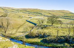 Malham Beck surrounded by fields. Malham Beck, North Yorkshire, England surrounded by small fields with characteristic limestone walls and trees with bare Royalty Free Stock Images