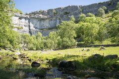 Malham Cove Yorkshire Dales National Park Tourist Attraction. Malham Cove is a limestone formation in Yorkshire Dales National Park, England. The large, curved Stock Image