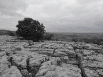 Malham cove top. Black and white picture of the limestone pavement on top of Malham cove Stock Images