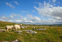 Malham krajobraz fotografia royalty free