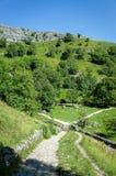 Malham liten vik, Yorkshire dalar, England royaltyfri bild