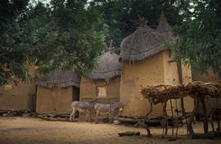 Mali, Africa - Dogon village and typical mud buildings. Ansongo, Mali, Africa - January 28, 1992: Dogon village and typical mud buildings with toguna and barns Stock Image