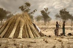 Mali, afryka zachodnia Peul wioska i typowi borowinowi budynki - Zdjęcia Royalty Free