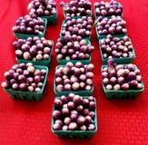 Mali aubergines przy rynkiem obraz stock