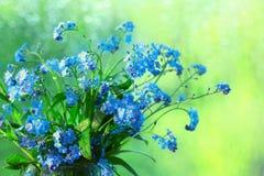 Mali błękitni dzicy kwiaty Fotografia Royalty Free