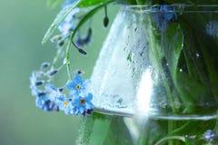 Mali błękitni dzicy kwiaty Obraz Stock