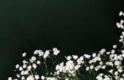 Mali biali kwiaty poślubia bukieta zmroku tło obraz royalty free