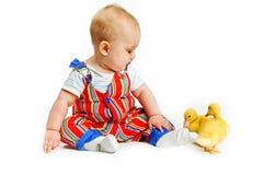 mali chłopiec kaczątka Obrazy Stock