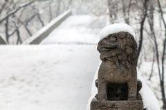 Chiński lew w zimie Obrazy Royalty Free