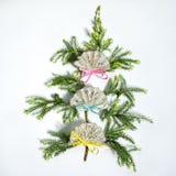 Mali christmass drzewni fotografia royalty free