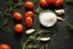 mali czerwoni dojrzali czereśniowi pomidory z zieloną pietruszką, czosnkiem i prostacką solą w śmietance na czarnym texture fotografia stock