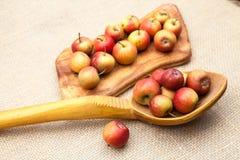 Mali, czerwoni jabłka, i ogromna drewniana łyżka z burlap teksturą Obrazy Stock
