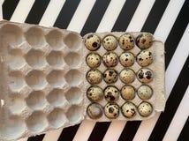 Mali diety przepiórki jajka w pudełku fotografia stock