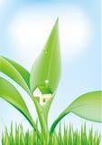 mali domów zieleni liść Zdjęcie Royalty Free