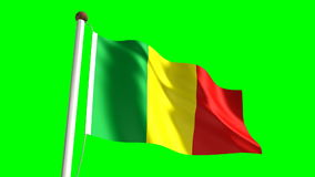 Mali flag stock footage