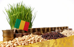 Mali flag waving with stack of money coins and piles of wheat Royalty Free Stock Image