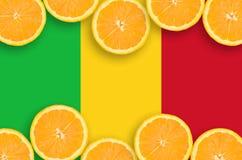 Mali flagga i citrusfruktskivahorisontalram arkivfoto