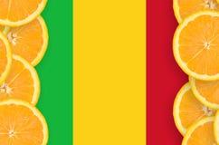Mali flagga i vertikal ram för citrusfruktskivor royaltyfria foton