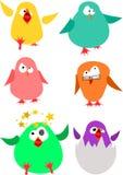 Mali grubi ptaki Zdjęcia Royalty Free