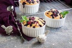 Mali jagodowi kulebiaki w ceramicznym pieczenia naczyniu obrazy royalty free