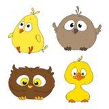 Mali śmieszni ptasi charaktery Obraz Stock