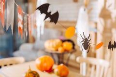 Mali nietoperze i pająki robić z papieru używać jako dekoracje dla Halloween zdjęcie royalty free