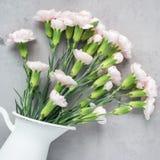 Mali ofert menchii goździka kwiaty w emaliowej wazie na szarość betonie, mother& x27; s dnia kartka z pozdrowieniami tło, mieszka Fotografia Stock