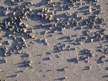 Mali otoczaki na betonie Zdjęcia Stock