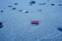 Mali otoczaki na piaskowatej plaży Obrazy Stock