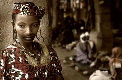 Mali, Peul p i Fulani, afryka zachodnia - Dogon wiosek borowinowi domy, Zdjęcie Royalty Free