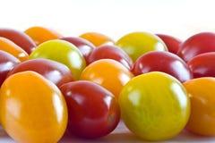Mali pomidory Fotografia Royalty Free