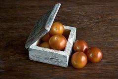 Mali pomidory w drewnianym pudełku Zdjęcie Royalty Free