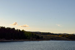 Mali ptaki lata nad Jeziornym Jindabyne i otaczającymi górami zdjęcie royalty free