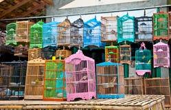 Mali ptaki w klatce. Jawa, Indonezja. Fotografia Stock