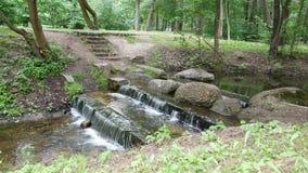 Mali siklawa schodki w parku Zieleni drzewa na naturze Kamienie w rzece zbiory